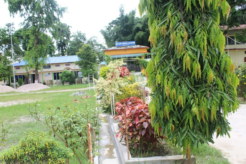 http://majulicollege.org/wp-content/uploads/2017/07/majuli-college-17.jpg